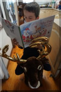 Boy riding a reindeer and reading a Christmas book