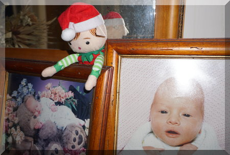 Tinkles the elf sitting on framed baby photos