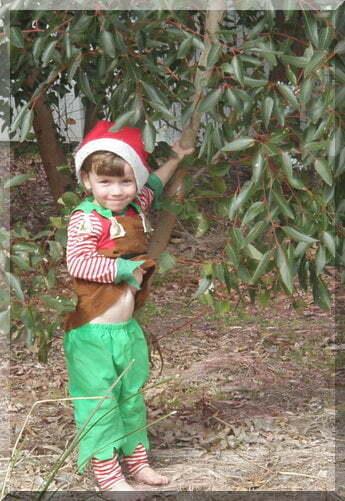 cute boy dressed as Santa's elf by a gum tree
