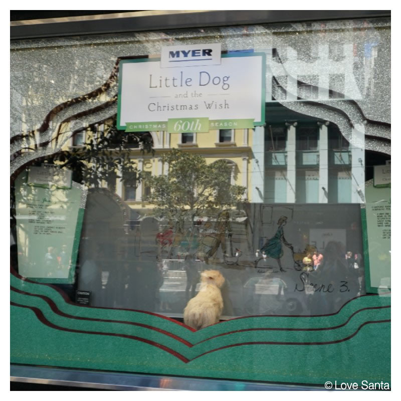 2015 Myer windows with 60th sign and little dog
