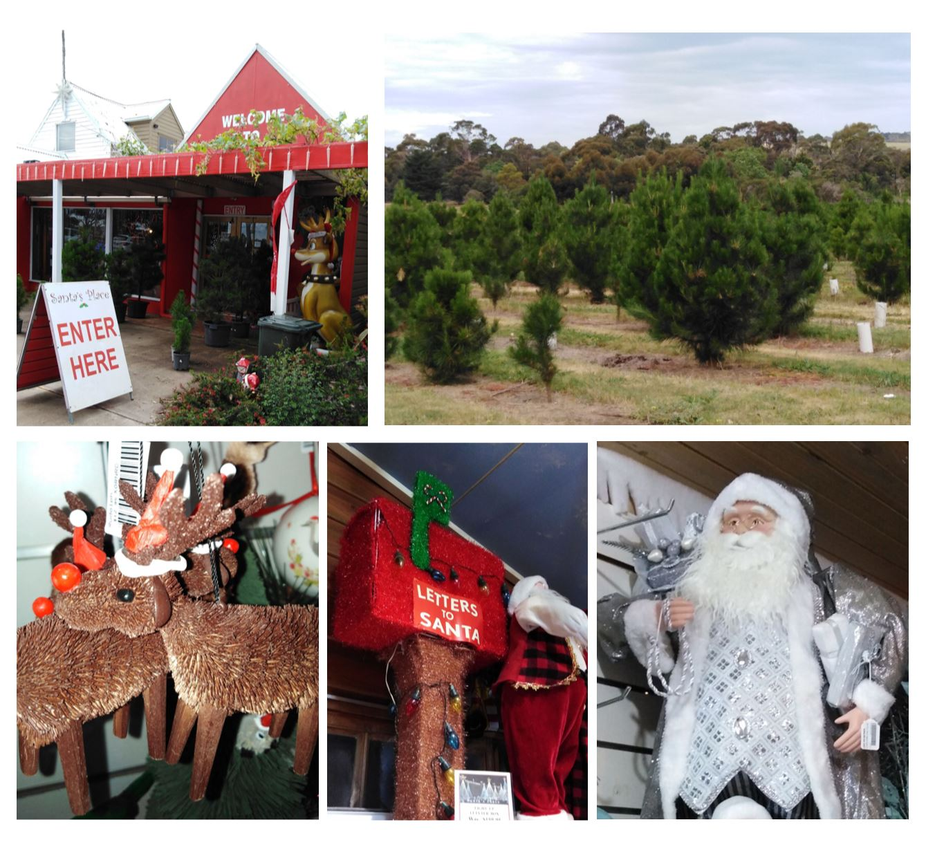 collage of photos fo Santa's Palce Christmas tree farm and shop