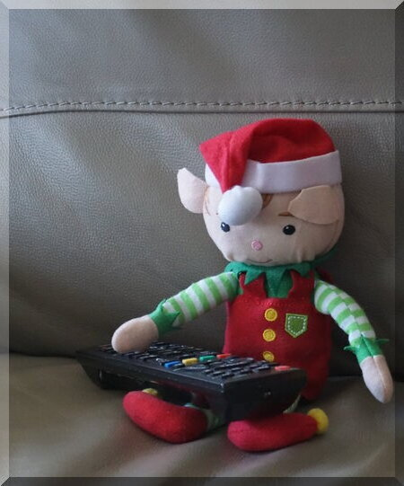 TV time for Tinkles the Elf last night...