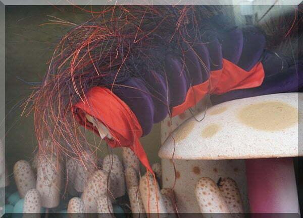 purple caterpillar from Alice in Wonderland at Myer windows 2018