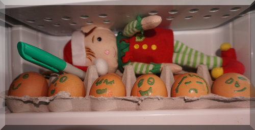 Tinkles the elf lying on eggs in the fridge, holding a texta