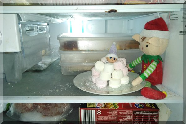 Building an igloo for Baby Elf
