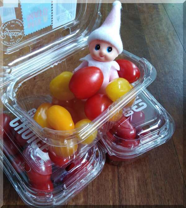 a baby Christmas elf sitting in a punnet of tomatoes