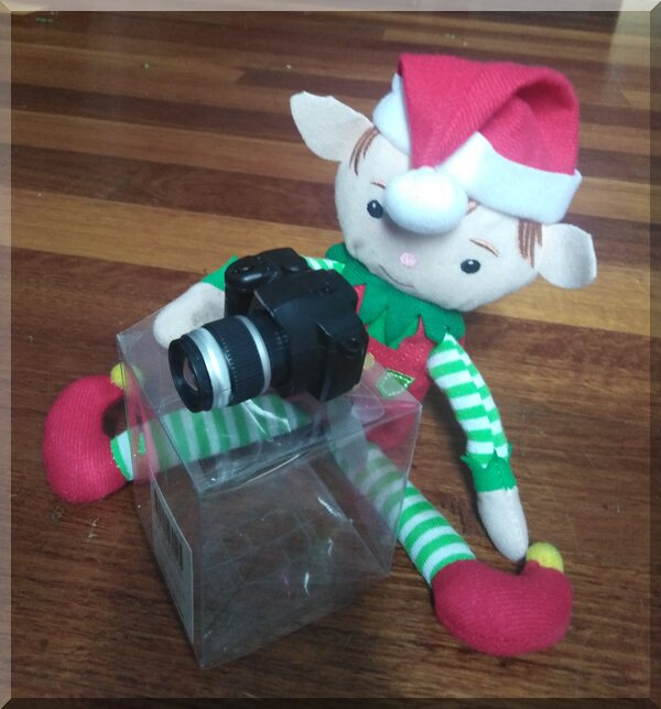 Christmas elf sitting behind a black camera on a stand