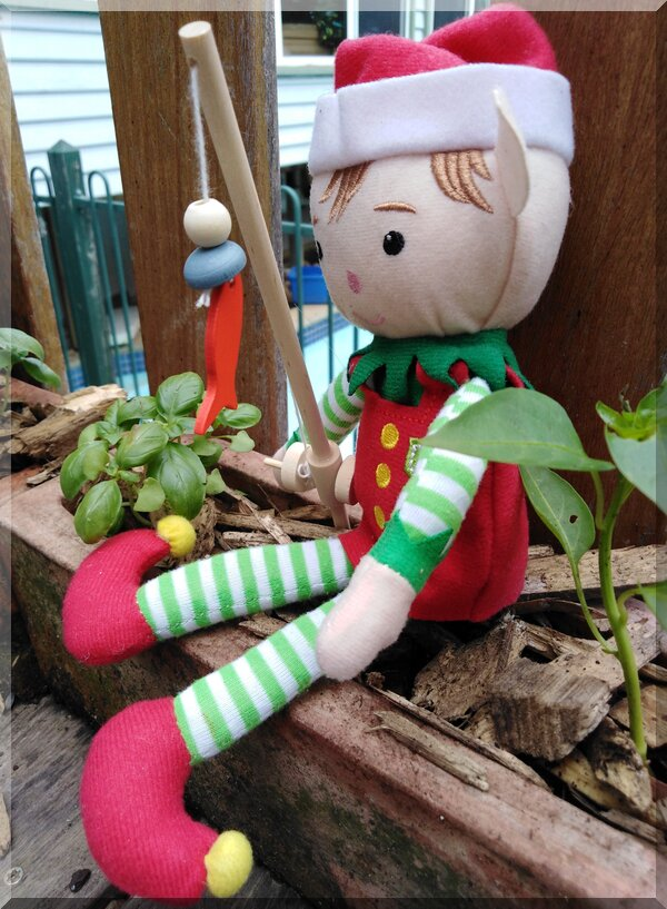 Christmas elf sitting amongst basil plants with a fishing rod and fish