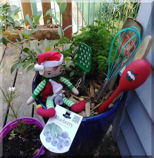 Two CHristmas elves sitting in a pot plant with various spoons stuck upright